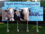 minnesota_state_fair