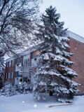 Apartment_in_winter