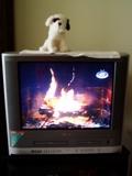 Fireplacetv