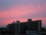 Summer_sunset