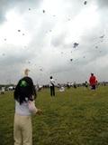 Fly_a_kite