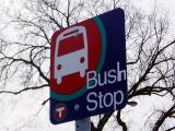Bush_stop1